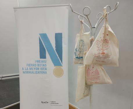 Proyeutu ganador III Premiu Fierro Botas a la Meyor Idea Normalizadora